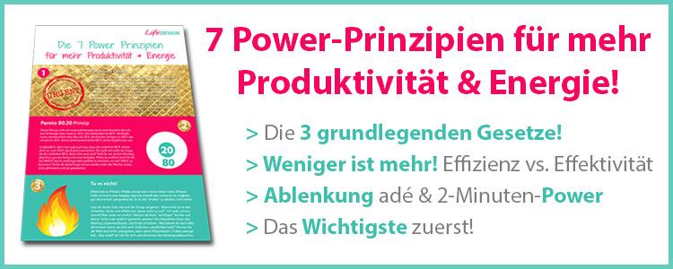 LD_ProduktivitaetsPrinzipien_Box